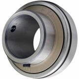 Rooling Mill Motor DC with SKF Bearing